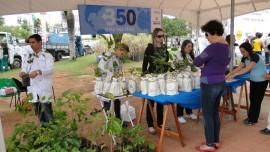 SOROCABA - oficinas de plantio e doaçao de mudas - portal